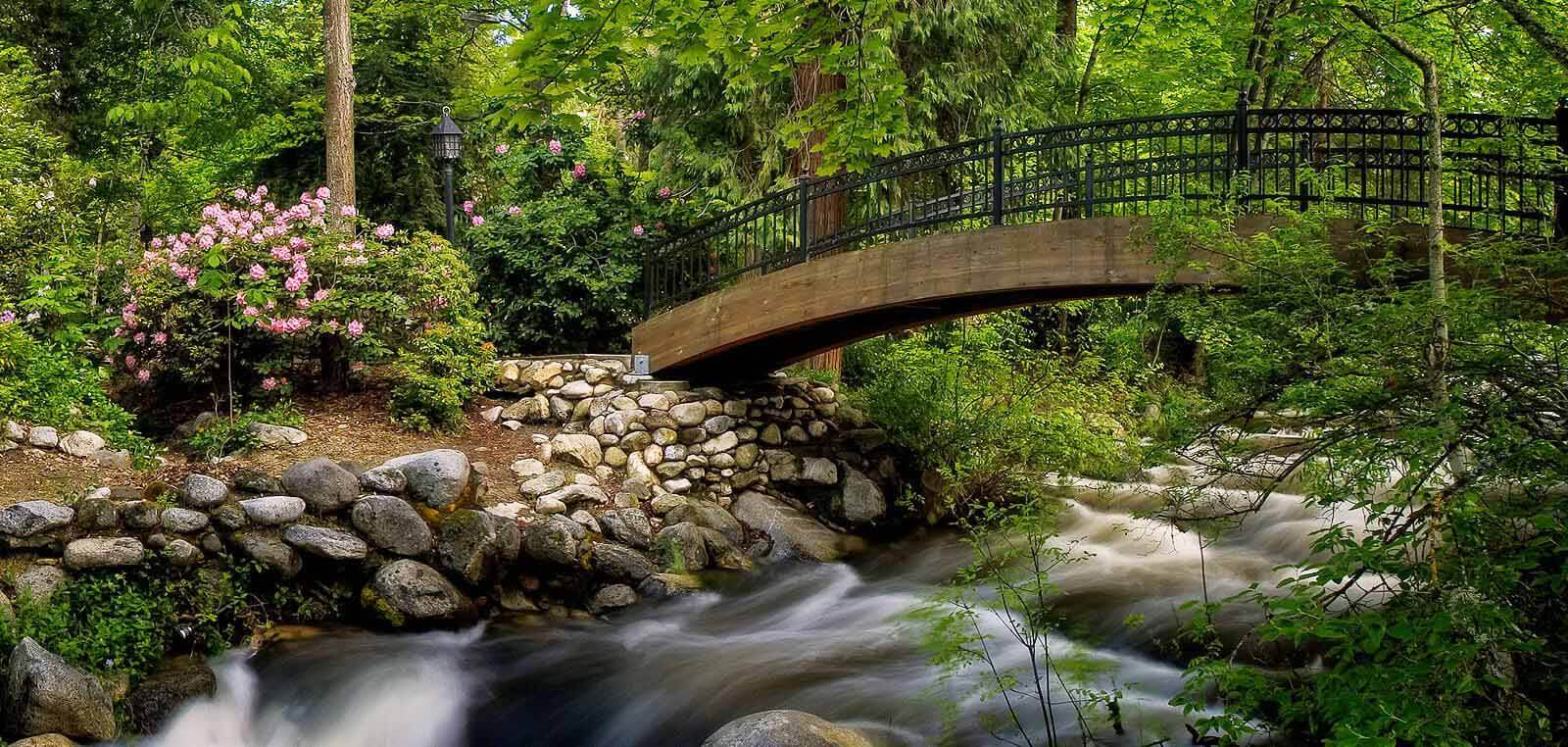 Creek in Lithia Park Ashland Oregon